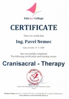 Cranisacral Therapy 1
